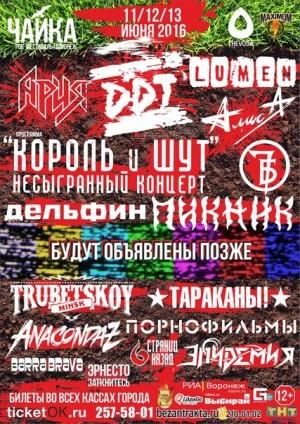 ЧАЙКА 2016