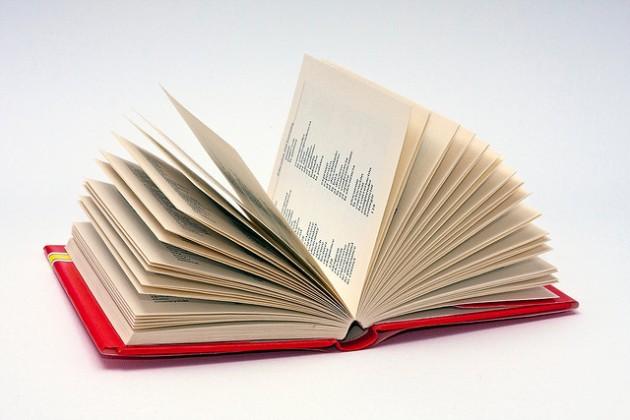 Кто на новенького !: Словарь для новичков