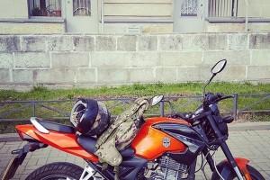 Оранжевый металлик Sagitta SNS 250 2011