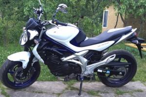 Синий металлик Suzuki SFV 400 Gladius 2010