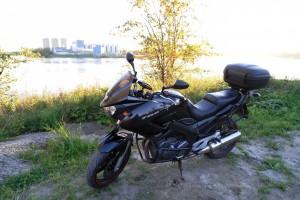 Черный металлик Yamaha TDM 900 2004