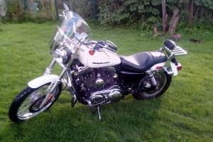 Белый Harley-Davidson XL1200C Sportster Custom 2005
