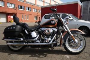 Золотой металлик Harley-Davidson FLSTN Softail Deluxe 2008