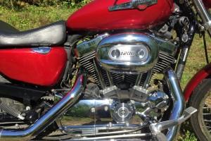 Красный металлик Harley-Davidson XL1200C Sportster Custom 2009