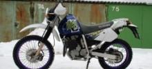 Suzuki Djebel