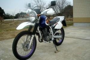 Синий Suzuki Djebel 250 XC 1998, угнан 10 ноября 2014 в Ногинске